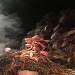 « L'Île aux vers de terre », création contemporaine de Cécile Fraysse, au Centre dramatique national Nanterre Amandiers